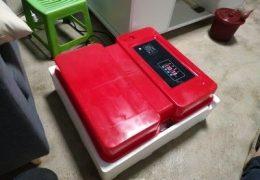 Incubadora Automática con Doble Pared Difusora